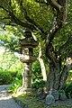 Lantern - Old Yasuda Garden - Tokyo, Japan - DSC06487.jpg