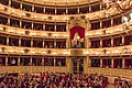 Laurea honoris causa a Paolo Conte (37599259942).jpg