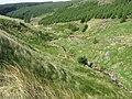 Lead Mine Burn - geograph.org.uk - 440845.jpg