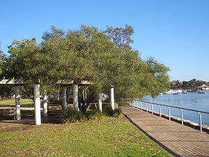 Lilyfield, New South Wales - Sensory Park in Leichhardt Park