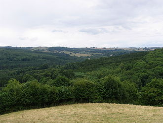 Lineover Wood - Image: Lineover Woods geograph.org.uk 43919