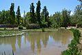 Llacuna del parc de la Rambleta, València.JPG