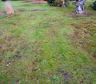 Unmarked grave - The unmarked grave of the actor Llewellyn Cadwaladr in Brookwood Cemetery in the UK