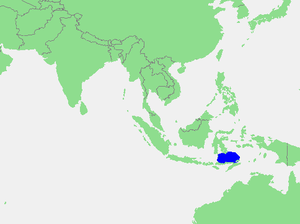 Flores Sea - Location of the Flores Sea within Southeast Asia