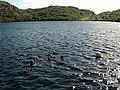 Loch Dubh, Nr Achmelvich - geograph.org.uk - 82451.jpg