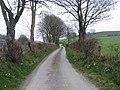 Lon Wledig rhwng Llanilar a Llangwyryfon - Country Lane between Llanilar and Llangwyryfon - geograph.org.uk - 399618.jpg