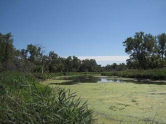 Slough (hydrology) - A slough in Nebraska in the United States