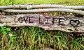 Love Life.jpg