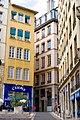 Lyon griffon 01.jpg