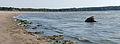 Mäntyluodon koiraranta panorama.jpg