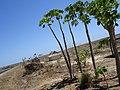 MADAGASCAR BETSIBOKA (1).jpg