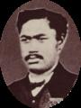 Maheanuu, La Famille Royale de Tahiti, Te Papa Tongarewa.png