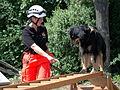 Maimarkt Mannheim 2014 - BRH Rettungshundestaffel-001.JPG