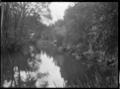 Mair Park, Whangarei, February 1923 ATLIB 300264.png