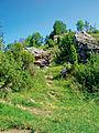 Male Pieniny – rezerwat Wąwóz Homole skały przy źródlisku.jpg