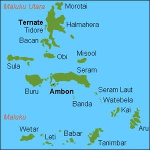 Maluku Islands international.png