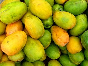 National symbols of India - Image: Mangifera indica (Manguier 4)