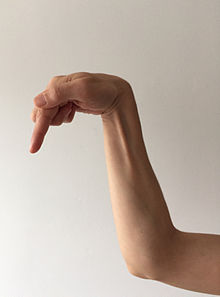 A depiction resembling praying mantis hand being emposed incorrectly (outside 3 fingers tucked-for-fist instead of poised for seizing, index finger too extremely extended, thumb not well-supporting and too exposed, forearm at too forward angle, elbow mis-positioned)