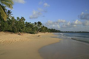 Martinique-11-Les Salines Beach