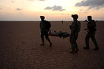 Mass Casualty Exercise in the Horn of Africa DVIDS233006.jpg