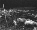 Mass grave Germany 1945, Hirzenhain 4.png