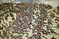 Massive cavalry charge (26048339221).jpg
