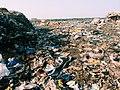 Mbeubeusse, trash dump Dakar, Senegal.JPG