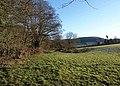 Meadow by Doverte Brook - geograph.org.uk - 1655310.jpg