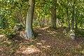 Megalithgrab Everstorfer Forst Nord 1.jpg