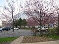 Mellon Arena - drive through side 04.JPG