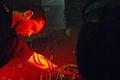 Mem Pamal - live act au nuit rouge2.jpg