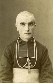 Adolphe Perraud Catholic cardinal