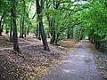 Michelský les, cesta od stanice Roztyly k restauraci Za Větrem.jpg