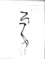 Miocorvus larteti 1.png