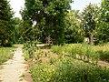 Mirovyane-park.jpg