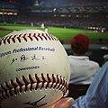 Mizuno Official Nippon Professional Baseball, 2013.jpg