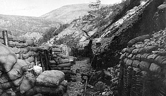 Italian Front (World War I) - Trenches at the mount Škabrijel in 1917