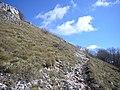 Monte San Vicino-Sentiero.jpg