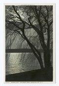 Moonlight - Potomac Park (NYPL b12647398-73779).tiff