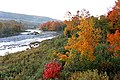 Morning Colours (15510290946).jpg