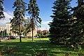 Moscow, Kutuzovsky prospect 38 trees (30590385003).jpg