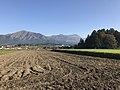 Mount Asosan from Kuwabaru, Hisaishi, Minami-Aso, Aso, Kumamoto 8.jpg