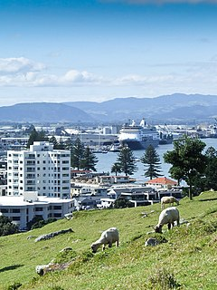 City in North Island, New Zealand