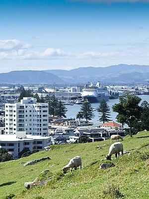 Tauranga - Tauranga from Mount Maunganui