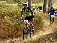 Mountain-bike-racing.jpg