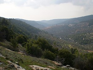 Jerash Governorate - Image: Mountains of Sakib 1