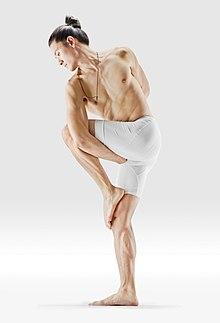 220px Mr yoga bound twist 2 yoga asanas Liste des exercices et position à pratiquer