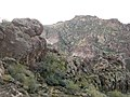 Mt. Pinter Base Loop, Tonto National Forest, Butcher Jones Trail, Fort McDowell, AZ 85264, USA - panoramio (69).jpg