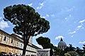 Musei Vaticani, The Vatican Museum ( Ank Kumar, Infosys Limited) 16.jpg