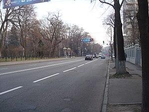 Hrushevsky Street (Kiev) - Hrushevskyi street near Mariinsky Park (2011)